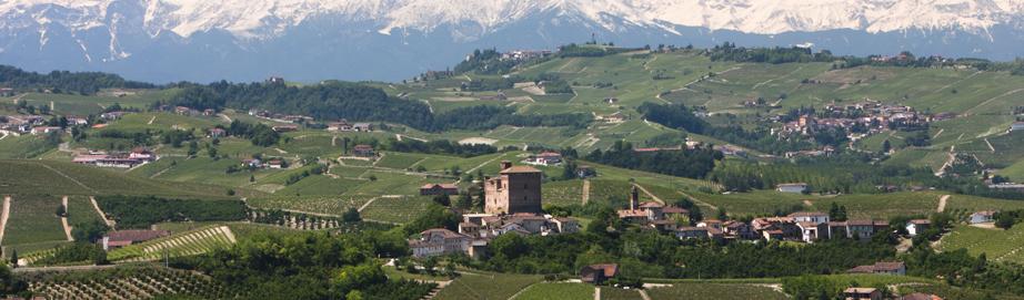 Langhe hills view