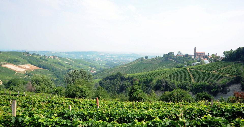 Castiglione-Tinella-panoramica-1-02942