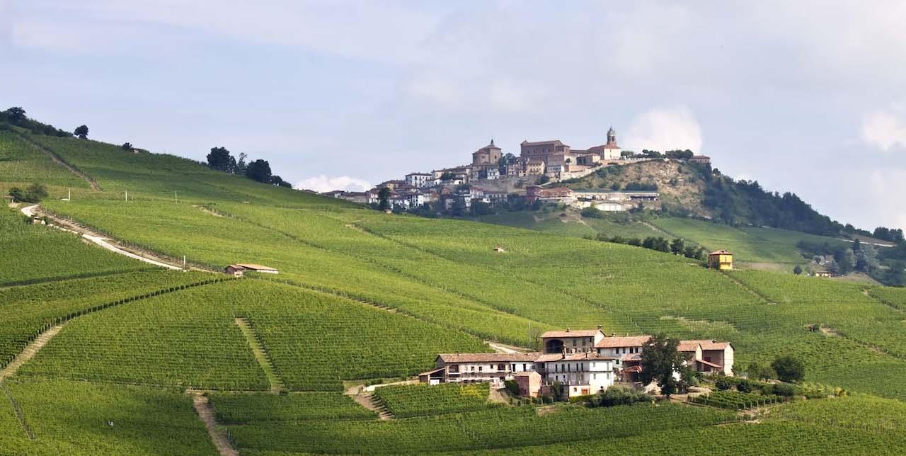Langhe Hills Landscape