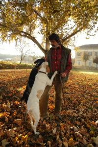 Trifulau & dogs