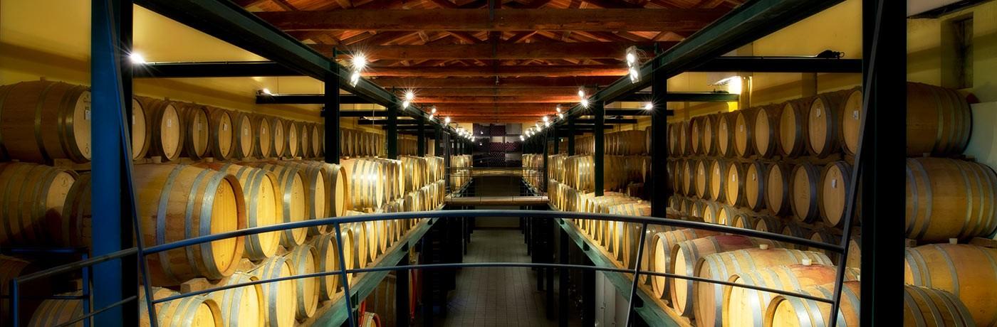 Cordero di Montezemolo cellar