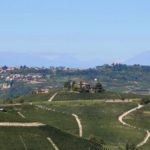 Langhe hills panoramic view